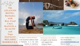 IslandWellnessRetreat_Flyer_FINAL